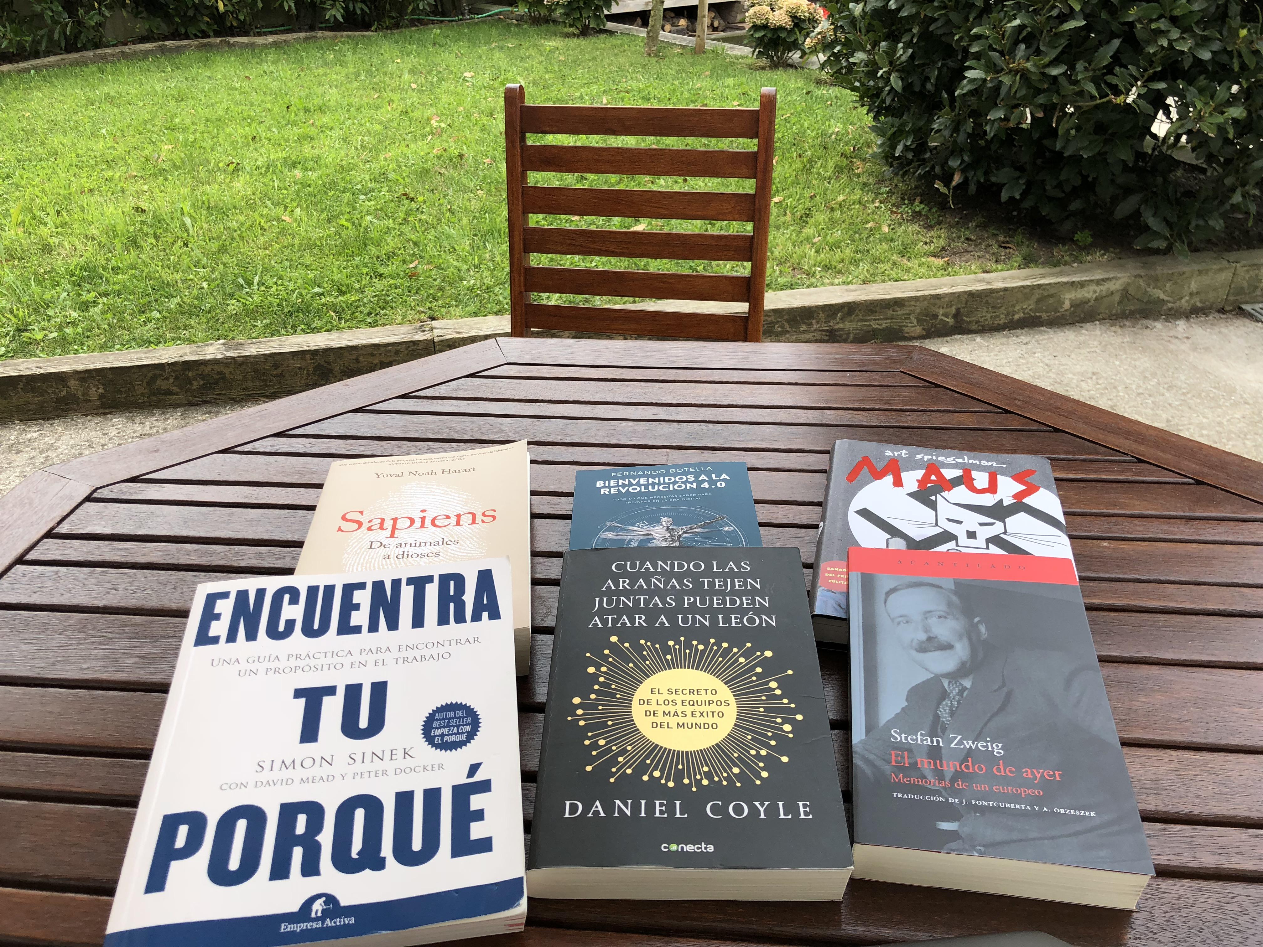Mis 6 libros para este verano
